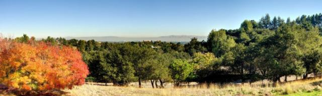 10800 MAGDALENA AVE , LOS ALTOS HILLS, CA 94024
