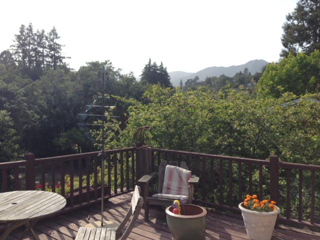 55 ELM AVE , MILL VALLEY, California 94941  Photo