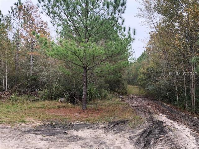 1036 Cohen, Pineland, SC, 29934 Real Estate For Sale